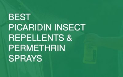 Best Picaridin Insect Repellents and Permethrin Sprays