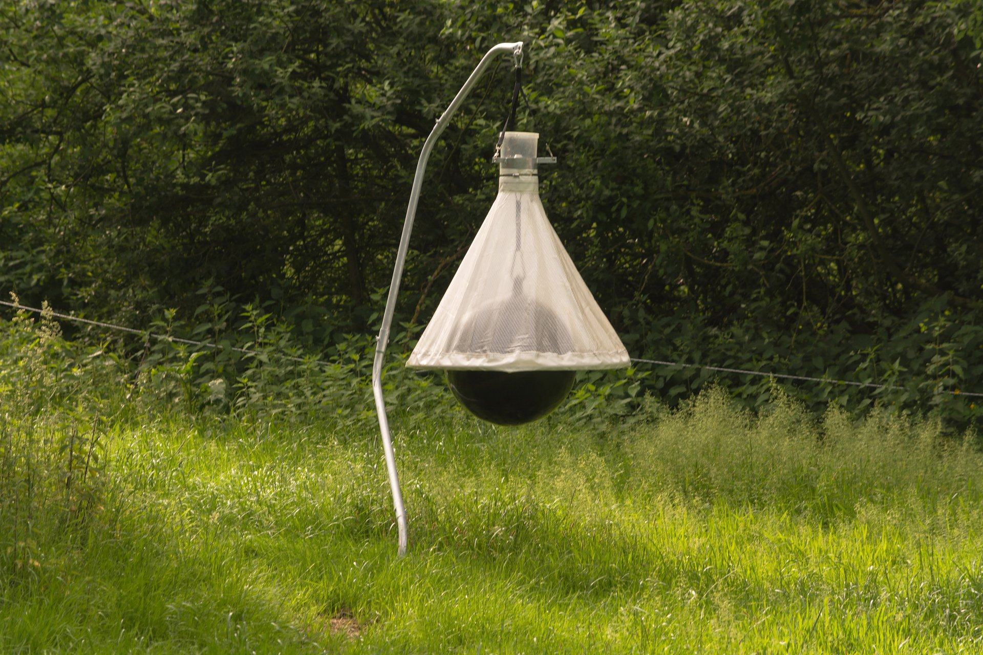 Best Horse Fly Traps | INSECT COP