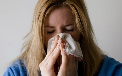 All About Dust Mite Allergy