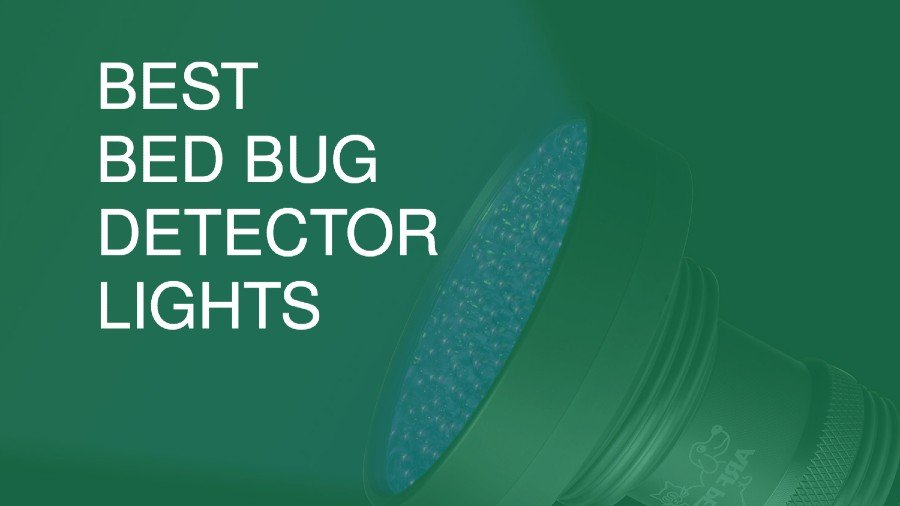Best Bed Bug Detector Lights