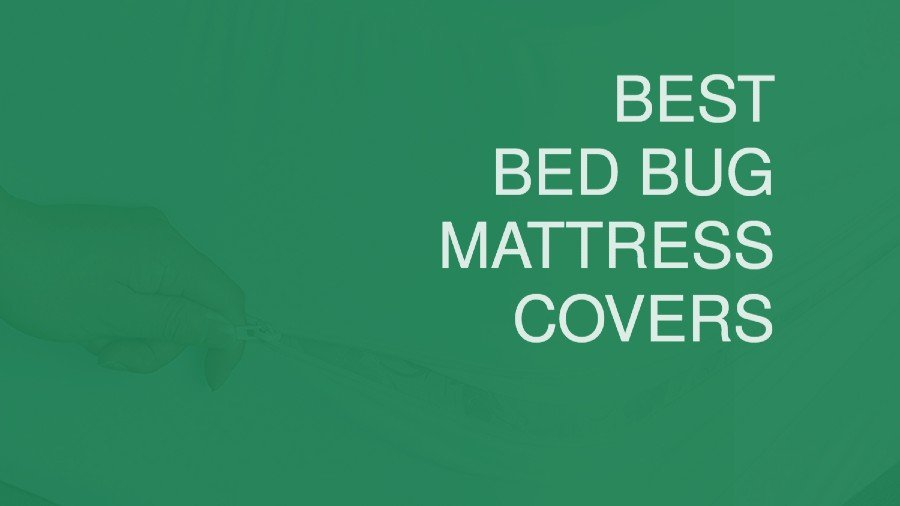 Best Bed Bug Mattress Covers