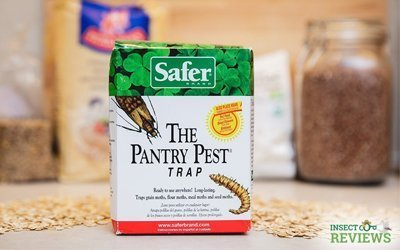 InsectCop Reviews: Is Pantry Pest Trap by Safer Brand Effective Against Moths?
