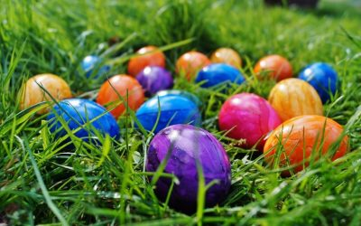 Make Your Easter Egg Hunt More Pleasant with These Backyard Pest Control Tips
