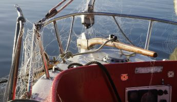 Protecting Your Boat from Spiders