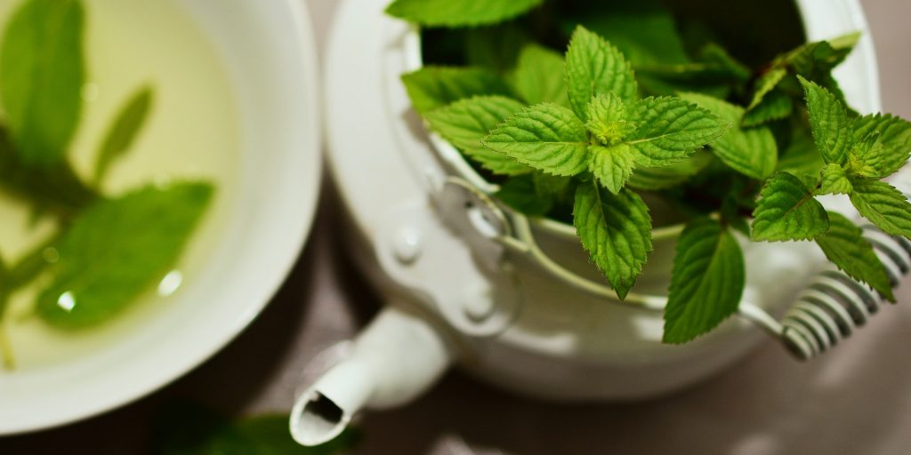 white pot and mug with peppermint leaves and tea