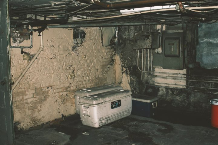 how to keep bugs out of basement