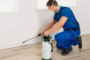 best California pest control companies