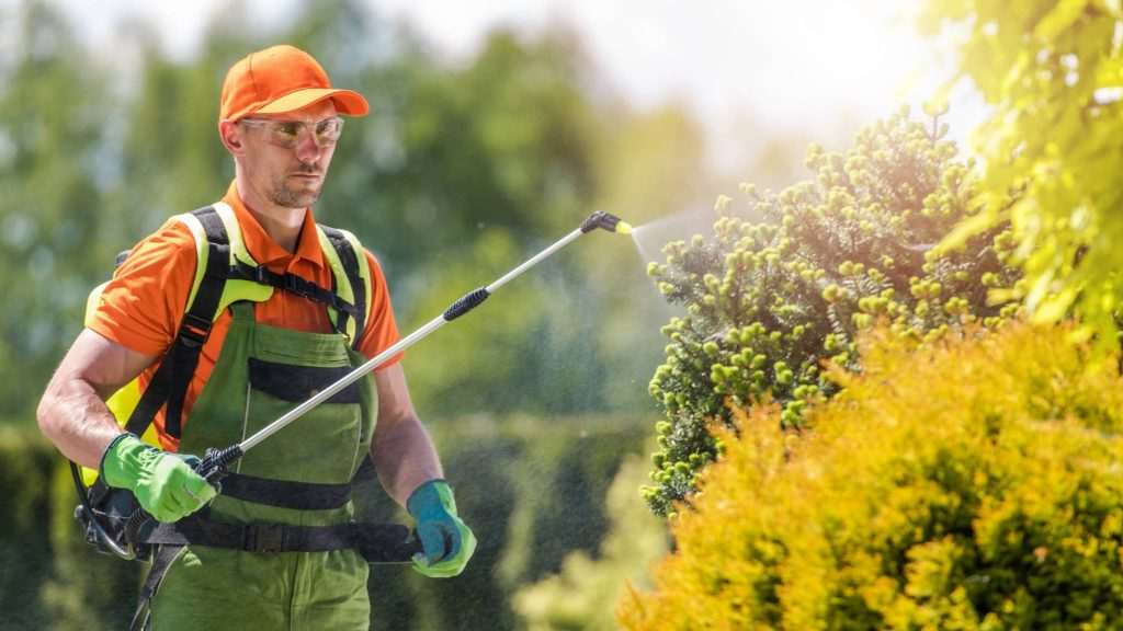 Florida pest control companies and exterminators